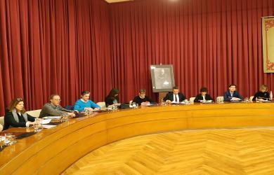 Pleno del Ayuntamiento de Logroño